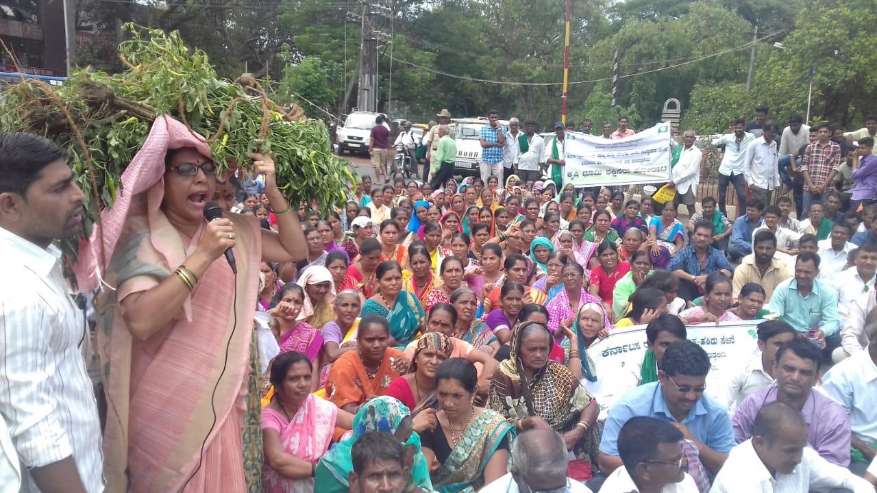 Halga farmers